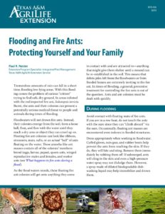 Flooding and Fire Ants: Protecting Yourself and Your Family (Texas A&M)